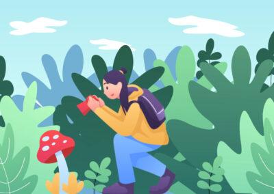 Nature Animated Scene   Popular Media