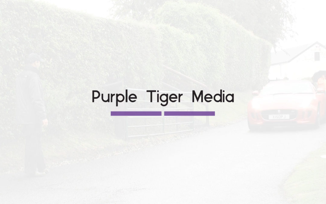 Purple Tiger Media Bumper | Purple Tiger Media