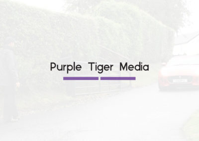 Purple Tiger Media Bumper | Purple Tiger Media